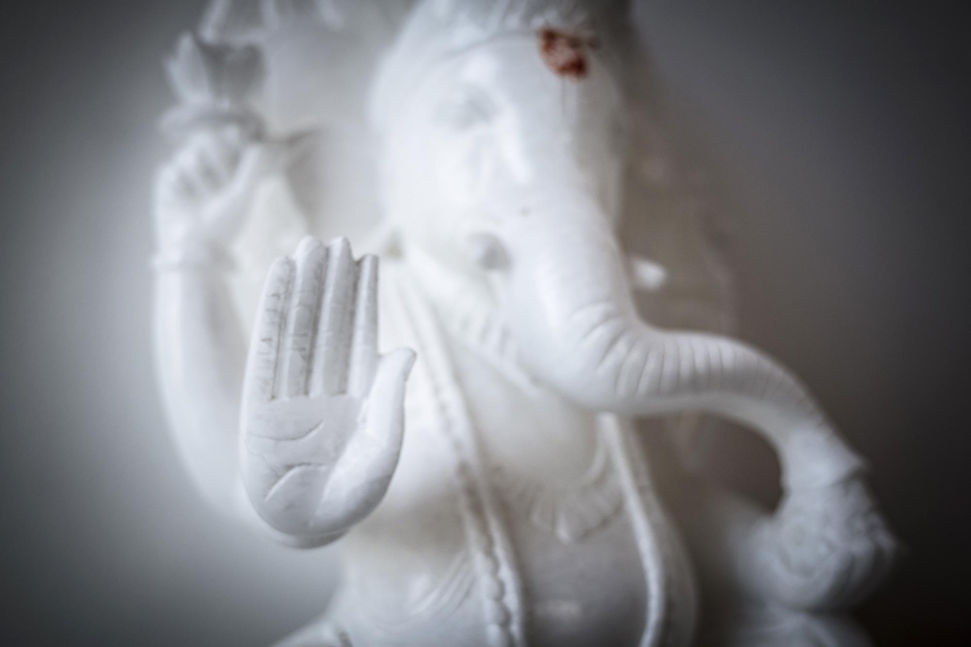 yoga-slider-elefante